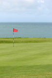 Golf green. On a links course Stock Image