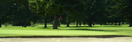 golf green Royaltyfria Foton