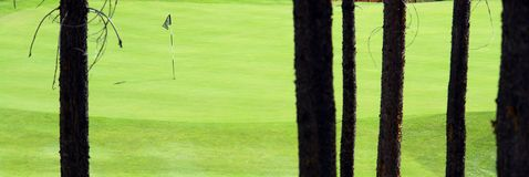 Golf Green royalty free stock images