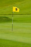 Golf green. A putting green with yellow flag. Shallow depth of field Stock Images