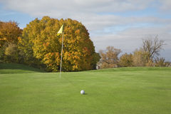 Golf green and ball with autumn trees Royalty Free Stock Photo