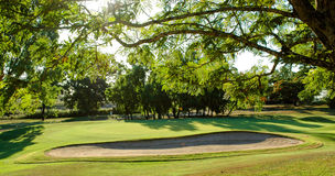 Golf green and bunker. Golf green and sand bunker taken late afternoon with sun peeping through the trees Royalty Free Stock Photo