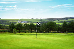 Golf green with a checkered flag Stock Photo