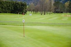 Golf green closeup stock images