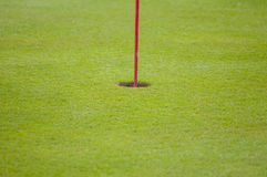 Golf green closeup Royalty Free Stock Photography