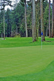 Golf Green Course stock image