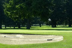 Golf Green Course Sand Trap Rake Flag Hole Royalty Free Stock Photography