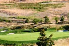 Golf green in the desert Stock Photo