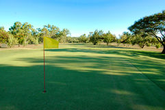 Golf green with flag. Golf green with yellow flag late afternoon with the sun throwing long shadows across the green Royalty Free Stock Photo