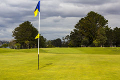 Golf green and flag Royalty Free Stock Photography