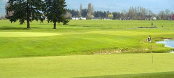 Golf Green Golfing Course BC Stock Photography