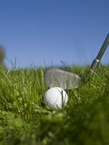 Golf in green grass Stock Photography