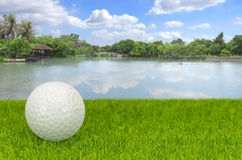 Golf on a green grass with blur lake background Stock Image