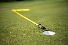 Golf Green. Pulled flag hole cup Stock Image