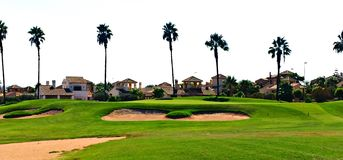 Golf green in Spain with houses and palm threes around. With sand bunkers in front Stock Photos
