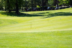 Golf green. View of a nice green of golf surrounded by trees during a sunny day Royalty Free Stock Photography