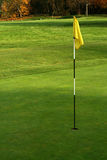 Golf green and yellow flagstaff. In hole royalty free stock photos