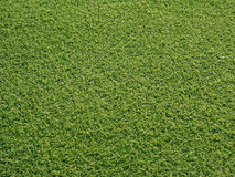 Golf greens Royalty Free Stock Photos