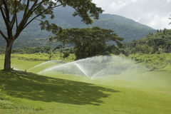 Golf Greens. Watering the greens Stock Photos