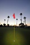Golf groen met speld, vlag en fairway Royalty-vrije Stock Afbeelding