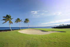 golf Hawaï de cours de champions photographie stock libre de droits