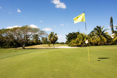 Golf hole 11. Yellow flag on golf course putting green Stock Photo