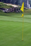 Golf Hole Flag. Yellow golf hole flag and greens Stock Photography