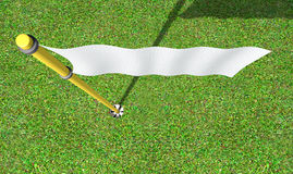 Golf Hole And Flag Stock Image