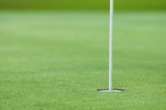 Golf hole. And flag with the green grass,shallow DoF stock photo