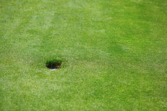 Golf hole and green grass. Golf hole on the green field Royalty Free Stock Photo