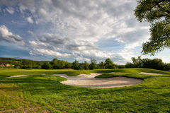 Golf hole under a tree Stock Image