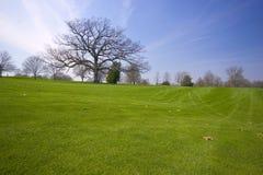Golf il campo Fotografia Stock Libera da Diritti