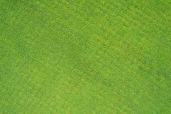 Golf il campo di erba Immagine Stock Libera da Diritti