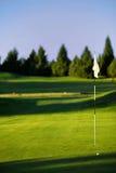 Golf il verde Immagine Stock Libera da Diritti