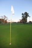 Golf il verde con il perno, la bandierina ed il tratto navigabile Fotografie Stock Libere da Diritti