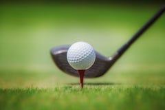 Golf im Gras stockfotos