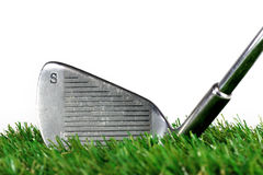 Golf iron. On the green grass Stock Image