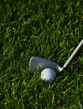 Golf iron and ball in grass Royalty Free Stock Photo