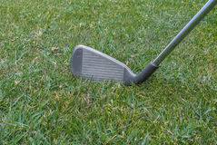 Golf iron Stock Image