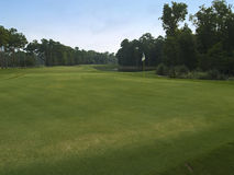 golf kursowa zieleń Zdjęcie Stock