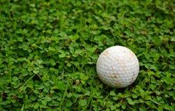 golf lätta redigerande element för bakgrundskontroll grupperade illustrationer mer min var god portfölj Fotografering för Bildbyråer