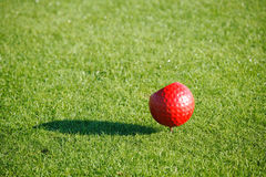Golf marker Stock Photography