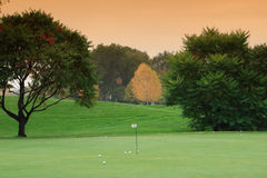 Golf meadow Stock Photography