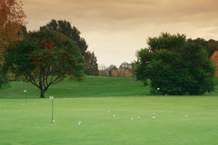 Golf meadow Royalty Free Stock Images