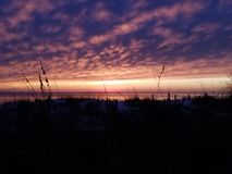 golf mexico över solnedgång arkivbild