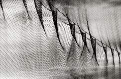 Golf Netting shot in black and white Royalty Free Stock Photos