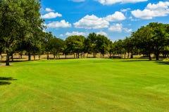 Golf o verde em Texas central alinhado com árvores fotografia de stock