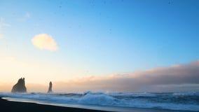 Golf oceaan zwart strand stock video