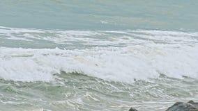 Golf op de overzeese kustlijn stock footage