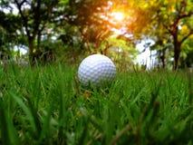 Golf p? ett gr?nt f?lt p? en h?rlig naturlig bakgrund royaltyfri fotografi